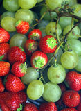 Strawberries and grapes Stock Image