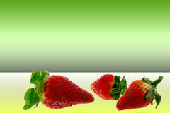 Strawberries on green background. Strawberries composition  on green background Royalty Free Stock Photography