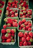 Strawberries in green boxes, vertical Royalty Free Stock Photography