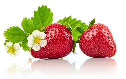 Strawberries with green leaf and flowers Royalty Free Stock Photos