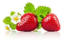 Strawberries with green leaf and flowers Stock Photos