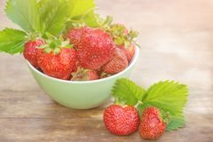 Strawberries with green leaves in a bowl closeup Stock Photography