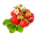 Strawberries and green leaves on white background Stock Photo