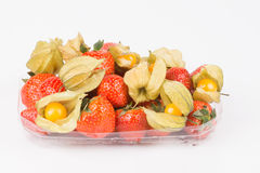 Strawberries with green leaves and yellow golden physalis in container on white background. Stock Photos