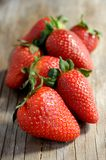 Strawberries group fresh fruit summer Royalty Free Stock Photography
