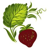 Strawberries. Hand drawn, , illustration in Ukrainian folk style royalty free illustration