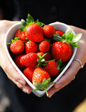 Strawberries in heart shape bowl Stock Photos