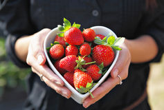 Strawberries in heart shape bowl Royalty Free Stock Photos