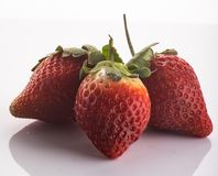 Strawberries in high key. Garden strawberry is a widely grown hybrid species of the genus Fragaria, collectively known as the strawberries royalty free stock photo