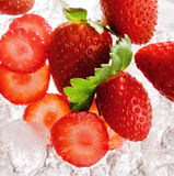 Strawberries on ice Royalty Free Stock Photo