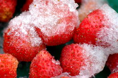 Strawberries with ice. For the dessert Royalty Free Stock Photo