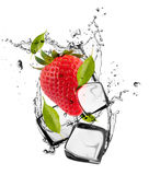 Ice fruit Royalty Free Stock Images