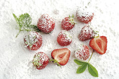 Strawberries with icing sugar and leaves Stock Image