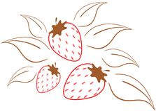 Strawberries illustration Royalty Free Stock Photo