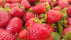 Strawberries. Image of a bunch of fresh strawberries Stock Image
