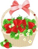 Strawberries In A Basket Royalty Free Stock Images