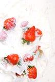 Strawberries In Milk Royalty Free Stock Photo