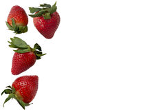 Strawberries isolated over white Royalty Free Stock Images
