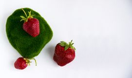 Strawberries. Isolated on a white background. Strawberry lies on the moss Royalty Free Stock Image