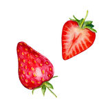 Strawberries isolated on white background, watercolor illustration Royalty Free Stock Photo