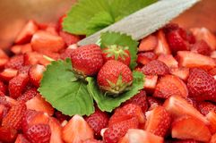 Strawberries for jam Stock Photography