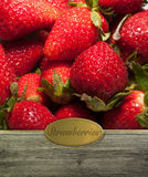 Strawberries labeled Stock Photo