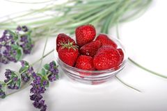 Strawberries and Lavender Royalty Free Stock Photography