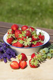 Strawberries, lavender and poppies in summer Royalty Free Stock Photo