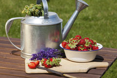 Strawberries, lavender, poppy capsules freshly harvested Royalty Free Stock Photo