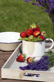 Strawberries and lavender on a tray Stock Photo