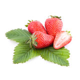 Strawberries with leaf Stock Images