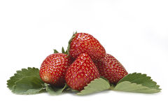Strawberries and leaves. Royalty Free Stock Photo