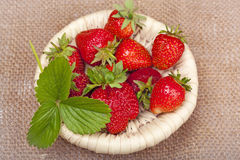 Strawberries with leaves Stock Image