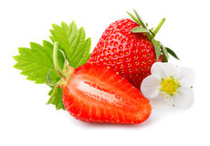 Strawberries with leaves and blossom isolated on a white Stock Photo