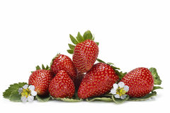 Strawberries with leaves and flowers. Stock Photos