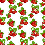 Strawberries with leaves  illustration. Royalty Free Stock Image