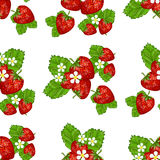 Strawberries with leaves  illustration. Royalty Free Stock Photo