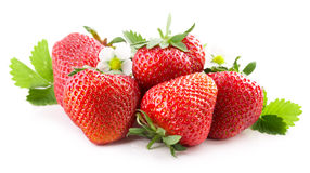 Strawberries with leaves isolated on the white background Royalty Free Stock Images