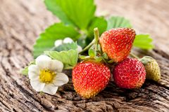 Strawberries with leaves Stock Photos
