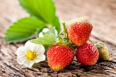 Strawberries with leaves Stock Images