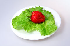 Strawberries and lettuce Stock Image