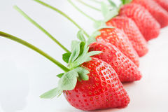 Strawberries in line Stock Images