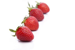 Strawberries in line Royalty Free Stock Image