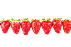 Strawberries line Royalty Free Stock Photography