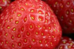 Strawberries macro Stock Image