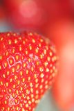 Strawberries macro. Strawbery slice cut in half with other strawberries in background, macro photograpy stock photo