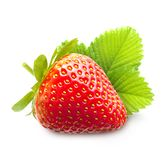 Strawberries macro with leaves Stock Image