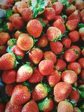 Strawberries. At the market Stock Photography