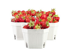 Strawberries from the market in cardboard boxes Stock Photography