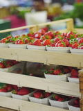 Strawberries market Royalty Free Stock Photo